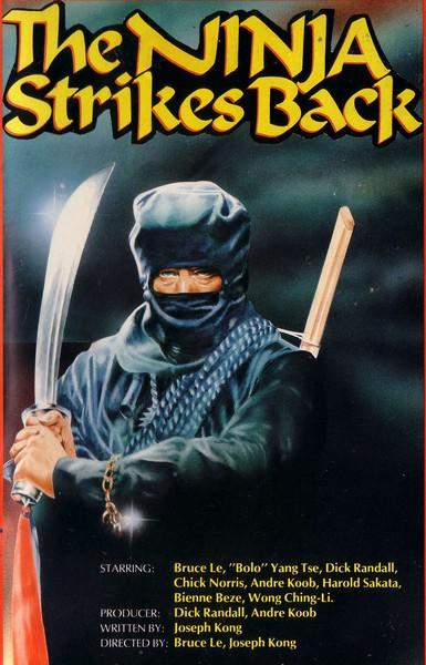 ninja_strikes_back