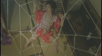 A Watcher in the Attic (1994)_5