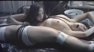 girl-and-the-wooden-horse-torture-2